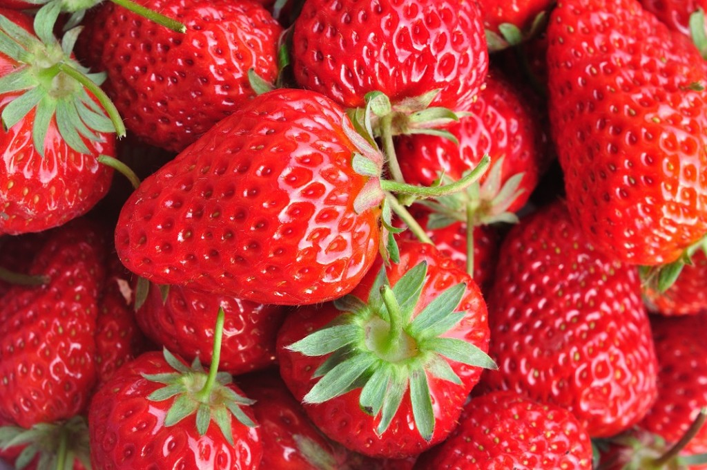 U.S.: California strawberry volumes set to pick up after cold, wet weather