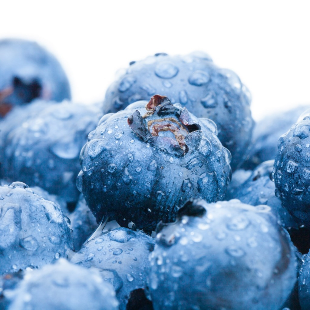 Agronometrics in Charts: Blueberry prices rising in U.S. market despite higher volumes