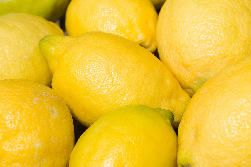 First U.S.-bound Argentine lemon shipments to take place in April