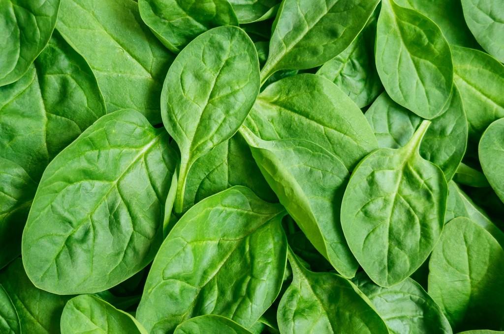 U.S.: Dole recalls baby spinach over possible salmonella contamination