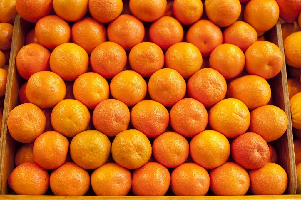 California citrus: Japan trade deal won't mitigate China-related losses, says CCM