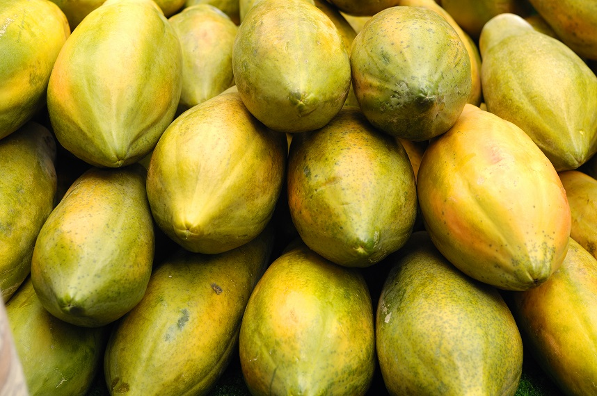 Mexican papaya exports rise despite food safety scare