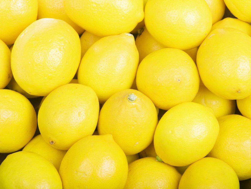 USDA says it won't extend stay on Argentine lemon imports