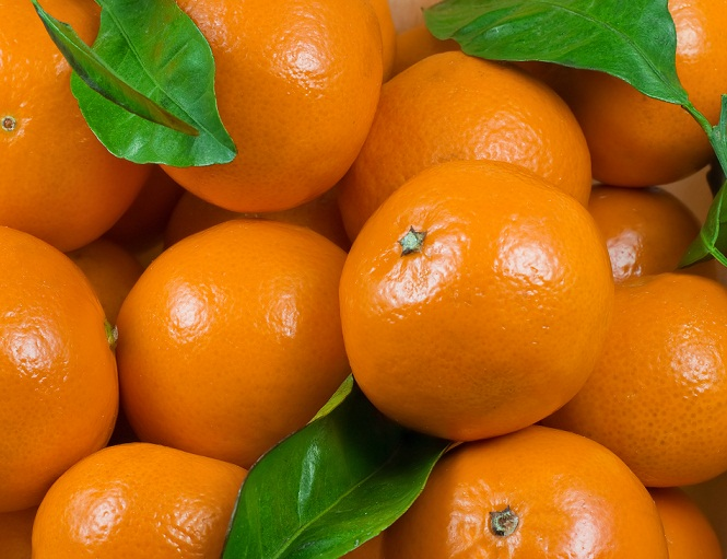 Clementines in Charts: It's almost ClemenTime for Chile