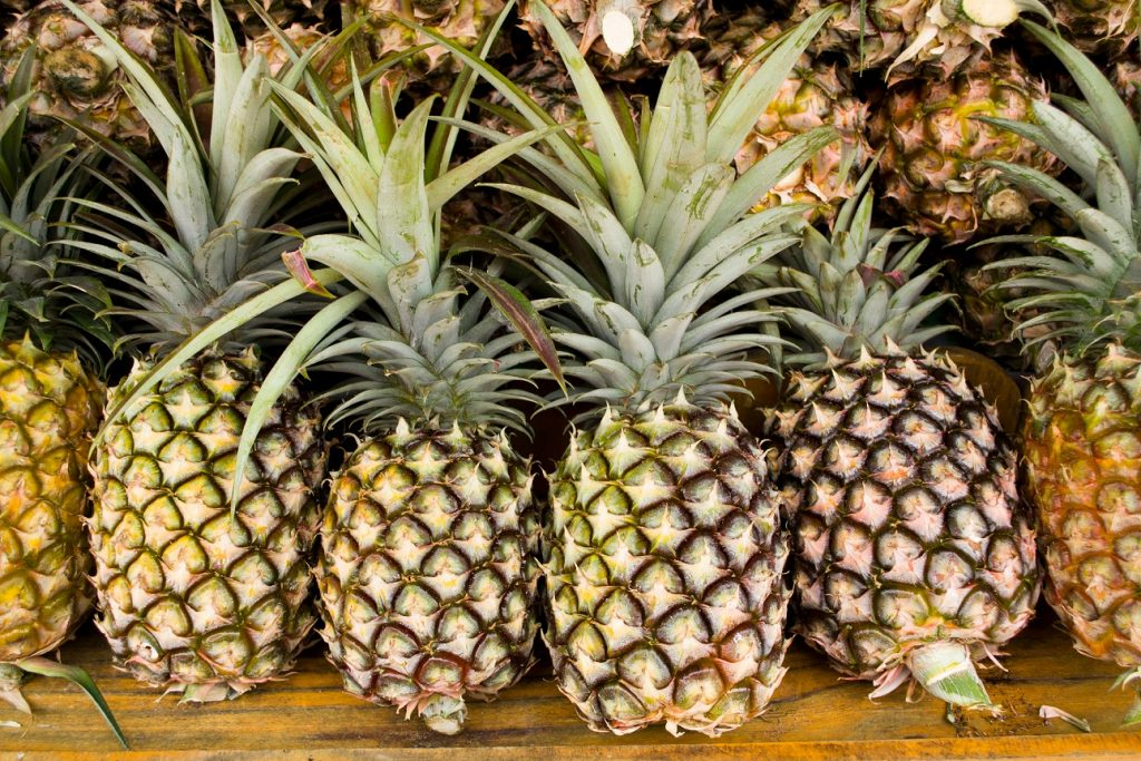 Australian researchers trial Covid-19 treatment with pineapple enzyme