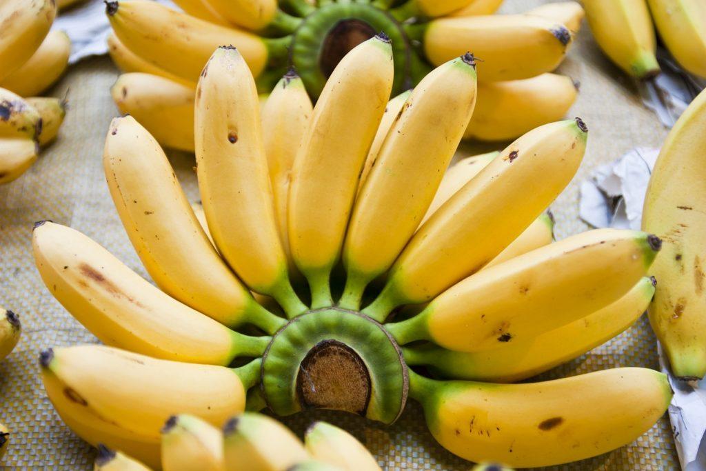 Ecuador exports fewer bananas to China, Turkey