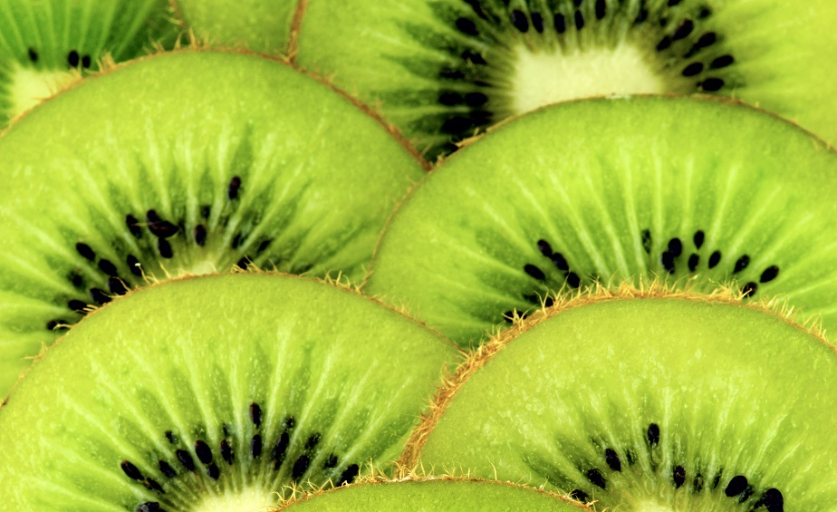 Agronometrics in Charts: Kiwifruit prices high compared to previous seasons