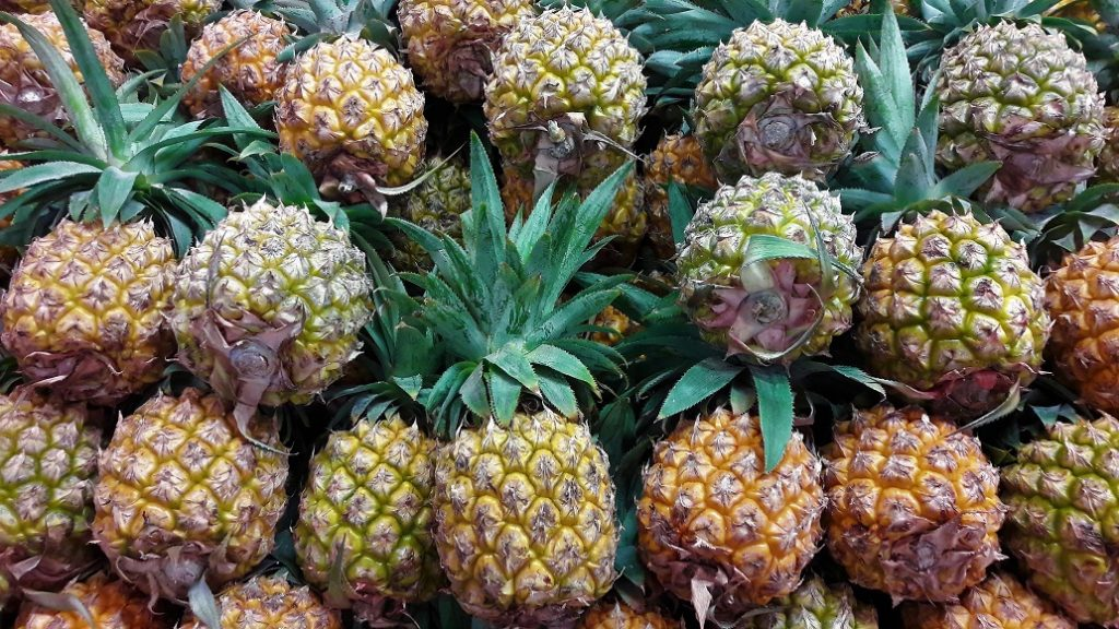 USDA releases PRA for potential Indonesian pineapple imports