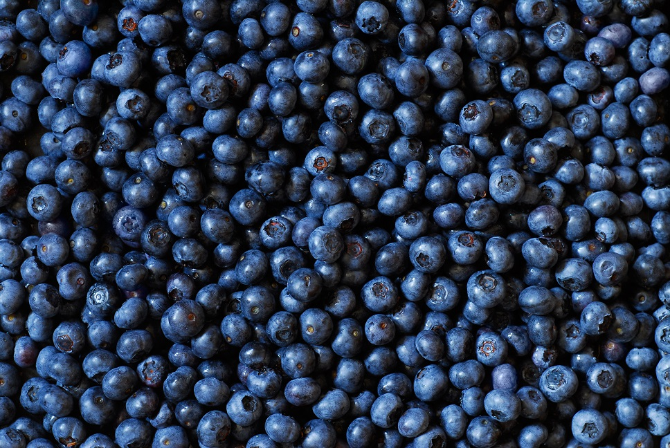 Frosts a major blow for Southeast U.S. blueberry, peach crops