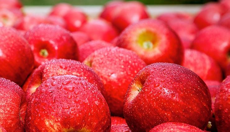 EU apple market to