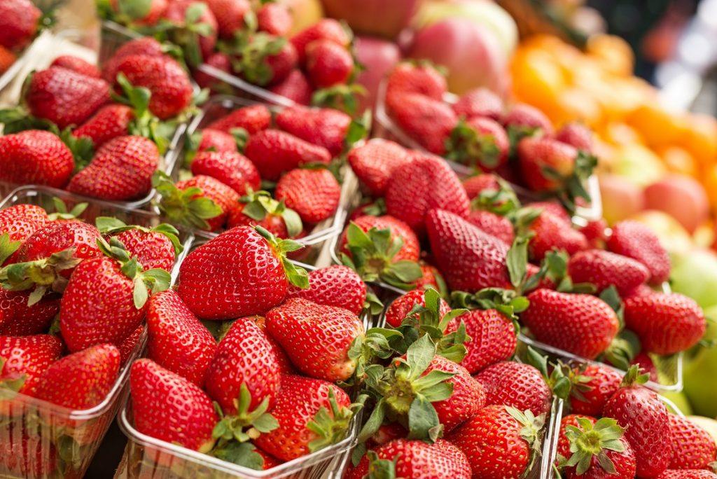U.S.: Florida strawberry season