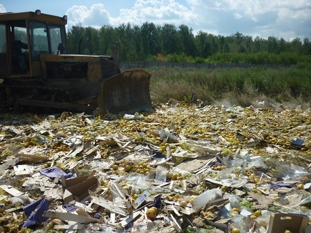 Russia has destroyed 19,000MT of food under import ban