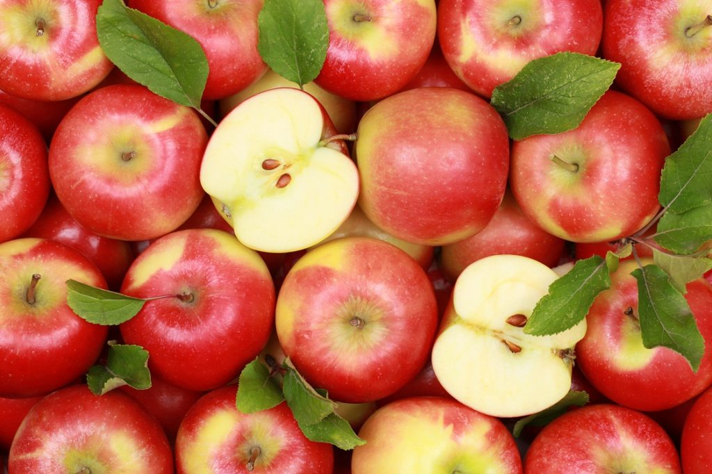 Michigan apple industry concerned about trade issue knock-on effects
