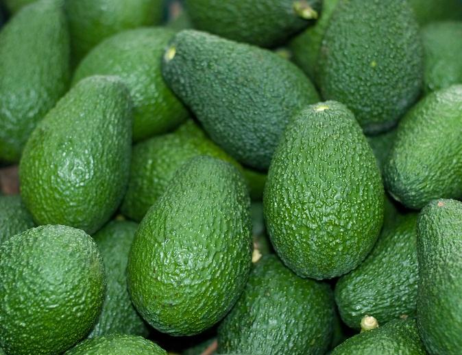 Kenya's avocado exports to China to rise 10% annually