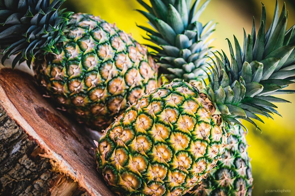 Panama expects to start pineapple exports to China in the first quarter of 2019