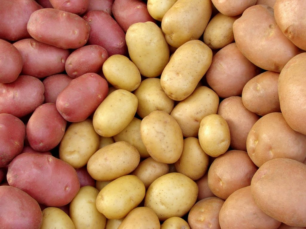 U.S. potato sales drop after a year of unparalleled growth