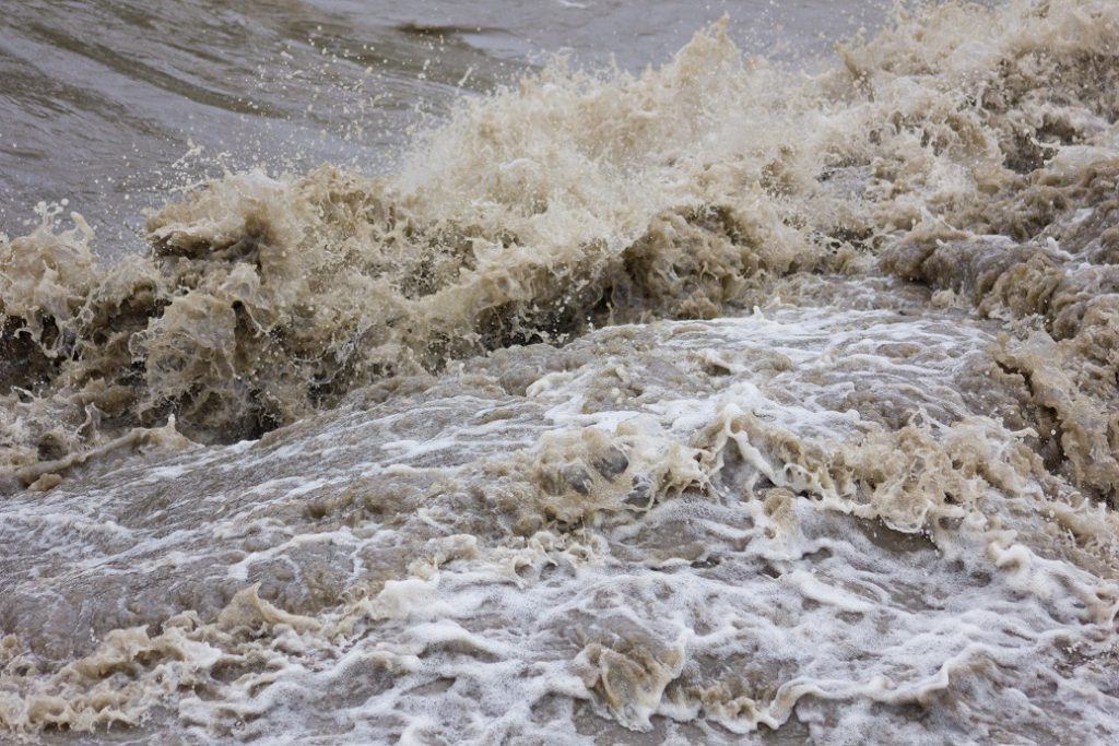 Excess rain damages Mexican crops