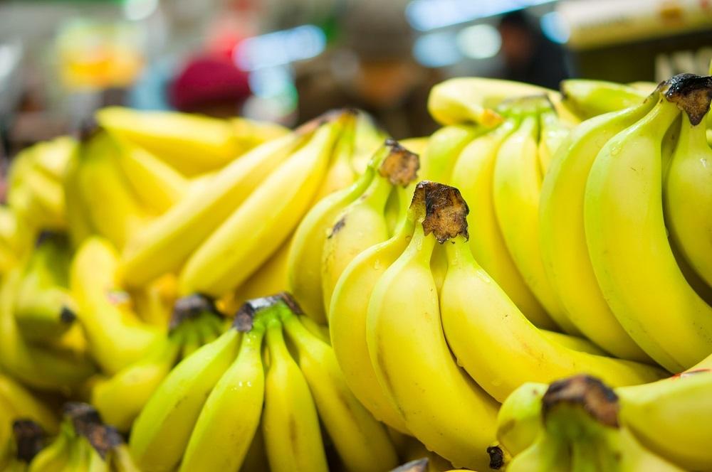 Ecuadorian bananas lose edge in EU markets, see decreased export growth rate
