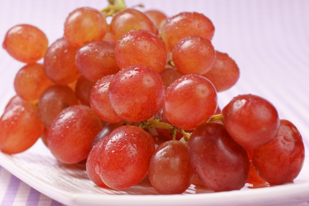 U.S.: Sharp price declines for Peruvian, Chilean grapes despite low supply