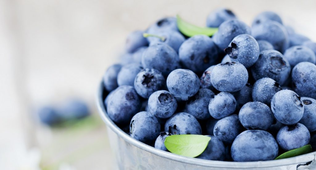 Blueberry industry ensuring supply, helping drive demand in support of supply chain partners