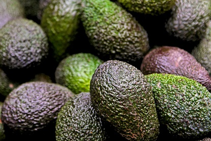 Avocados in Charts: Peru - An opening window of opportunity