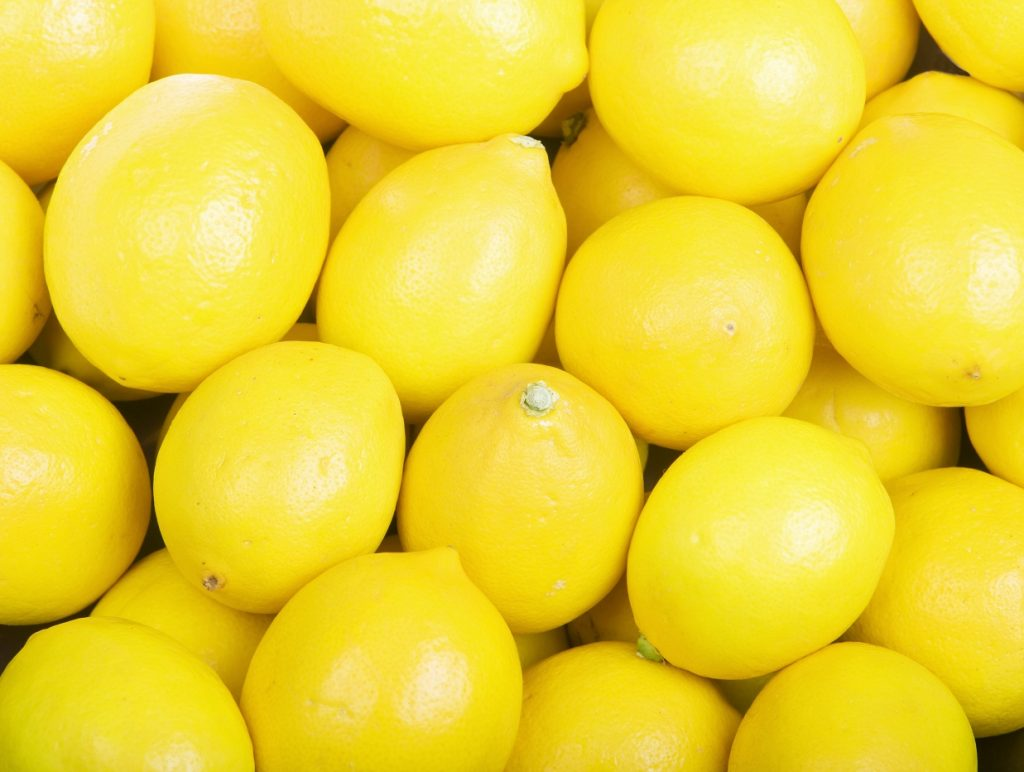 Spain's lemon estimate unchanged despite cold snap