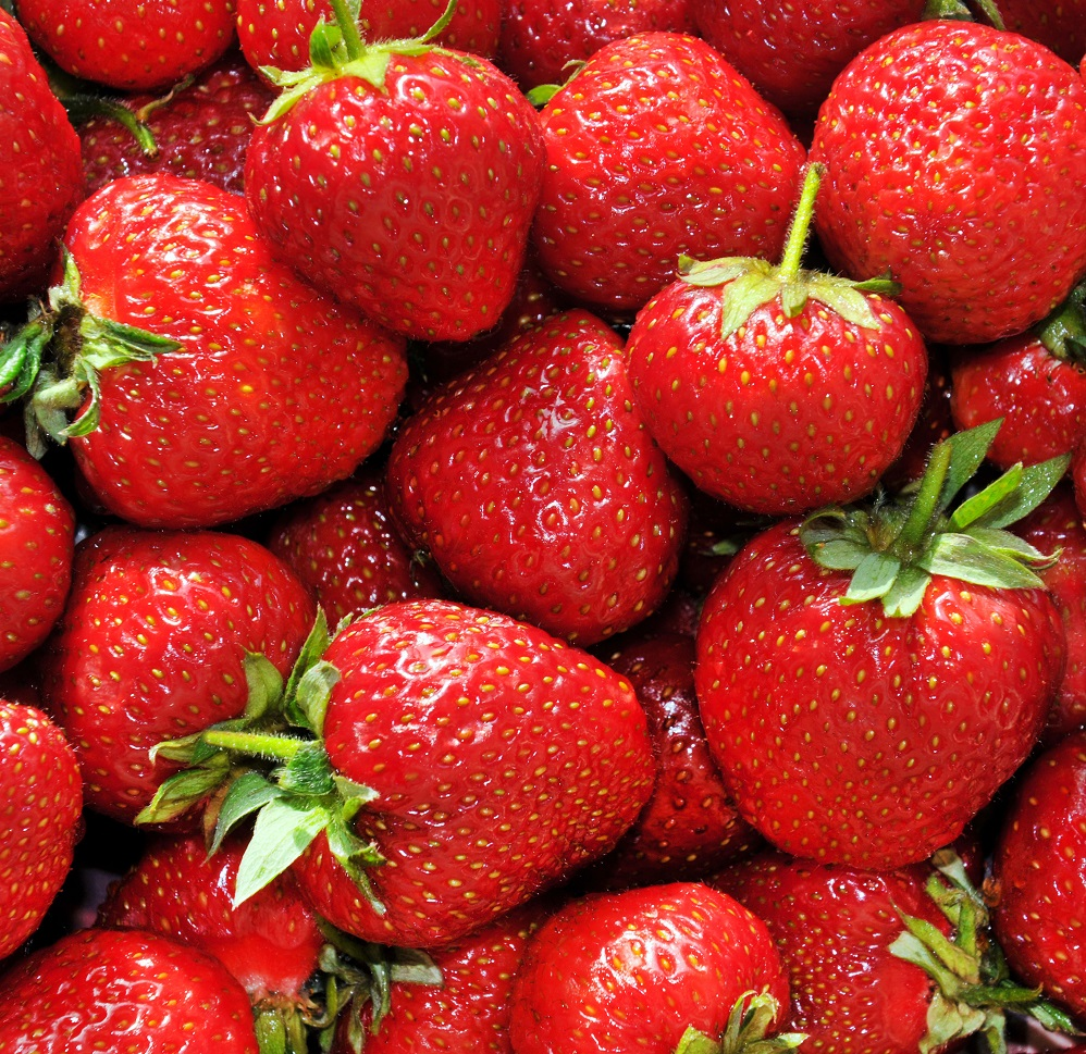 Strawberries in Charts: Expected California shortage, why aren't last two months of high prices a model?