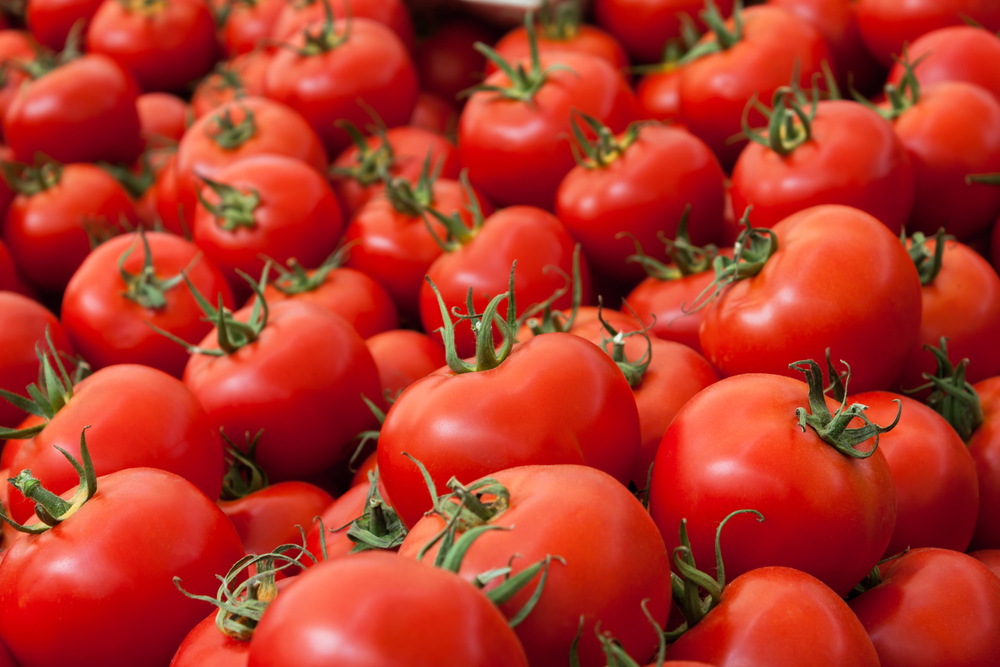 U.S. Florida Tomato Exchange says newly proposed Mexico deal