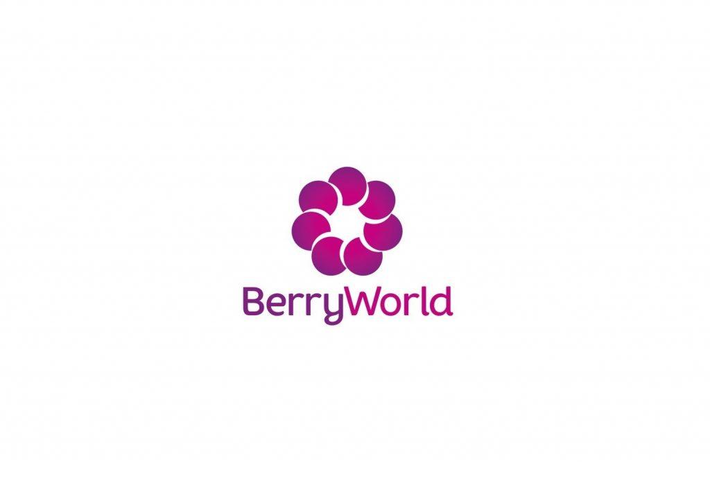 BerryWorld announces the start of British kiwi berry season