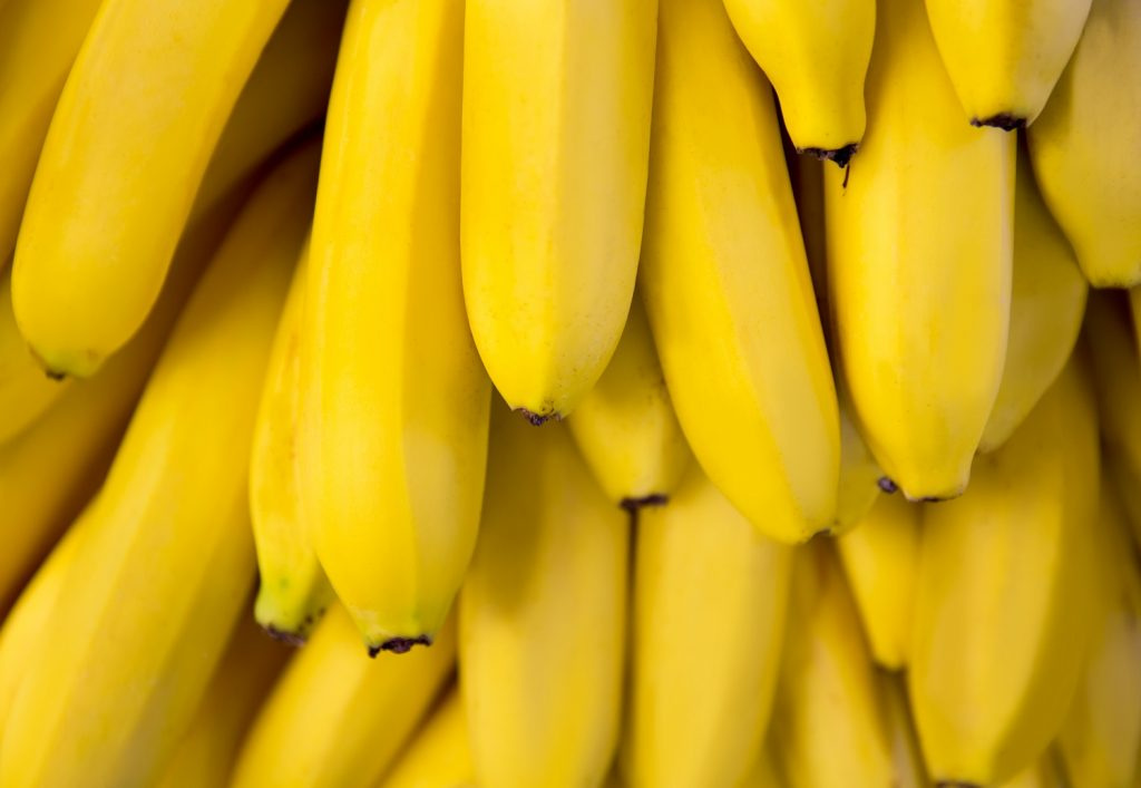 Colombia: TR4 suspected on two banana farms