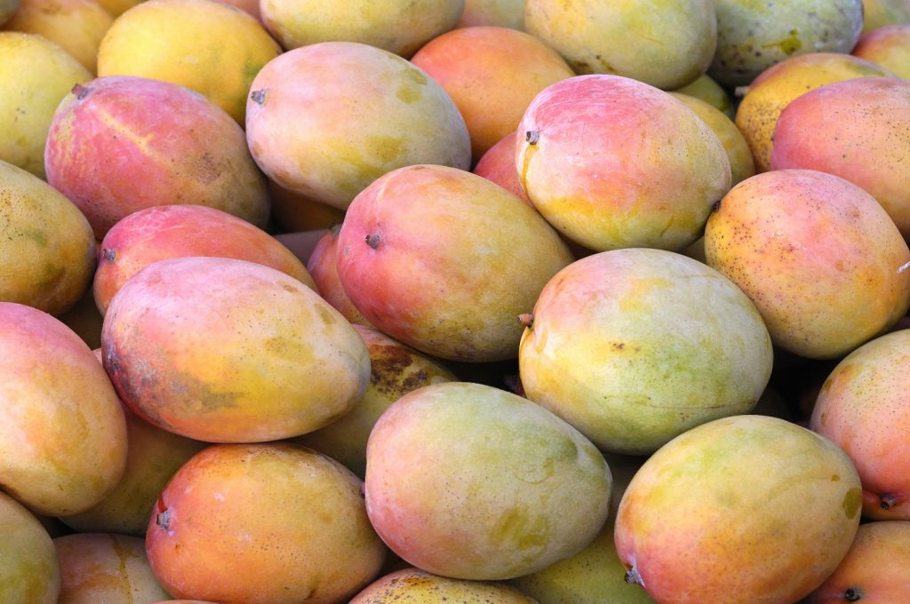 U S Mango Market Sees More Volume And More Variety Freshfruitportal Com