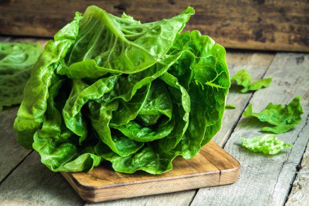 FDA announces new sampling plan for Yuma-grown romaine