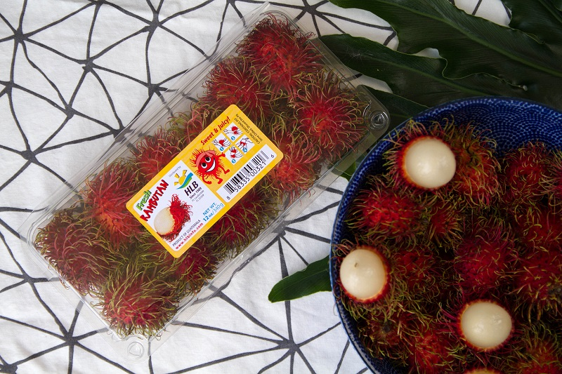 U.S.: HLB Specialties gears up for rambutan season