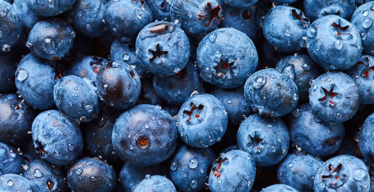 Peruvian blueberry exports rose 50% in 2019 - FreshFruitPortal.com