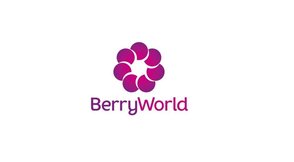 South Africa: BerryWorld forecasts blueberry supply growth of 40%