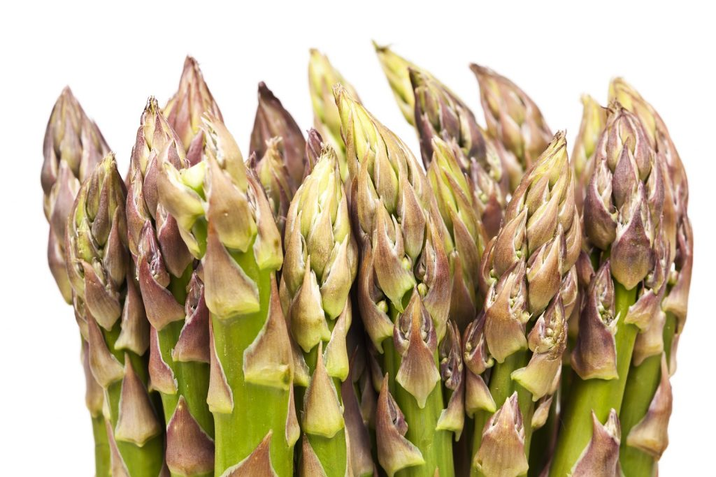 Asparagus in Charts: Mexico sees eight weeks of high prices
