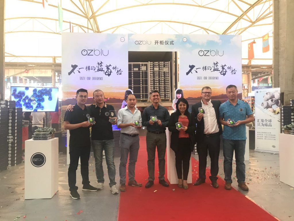 China: First Peruvian OZblu blueberries received by Riverking