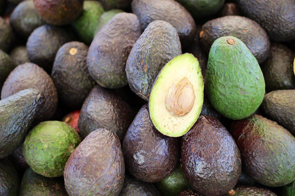 Avocado cultivation to continue expansion throughout Spain