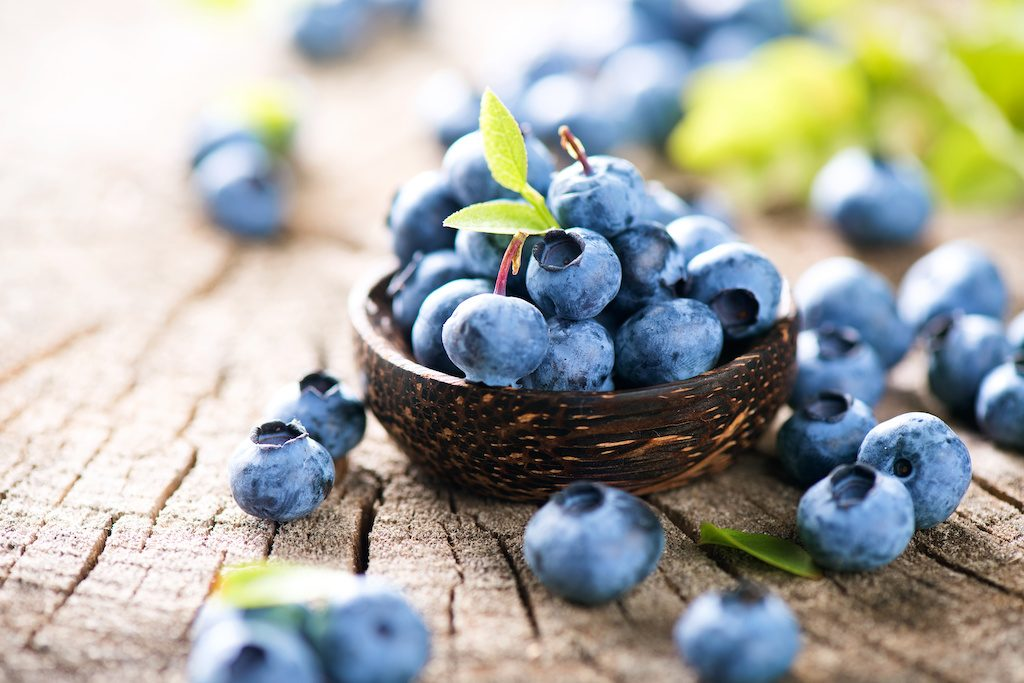 South American blueberry exporters aim to boost blueberry demand in global markets