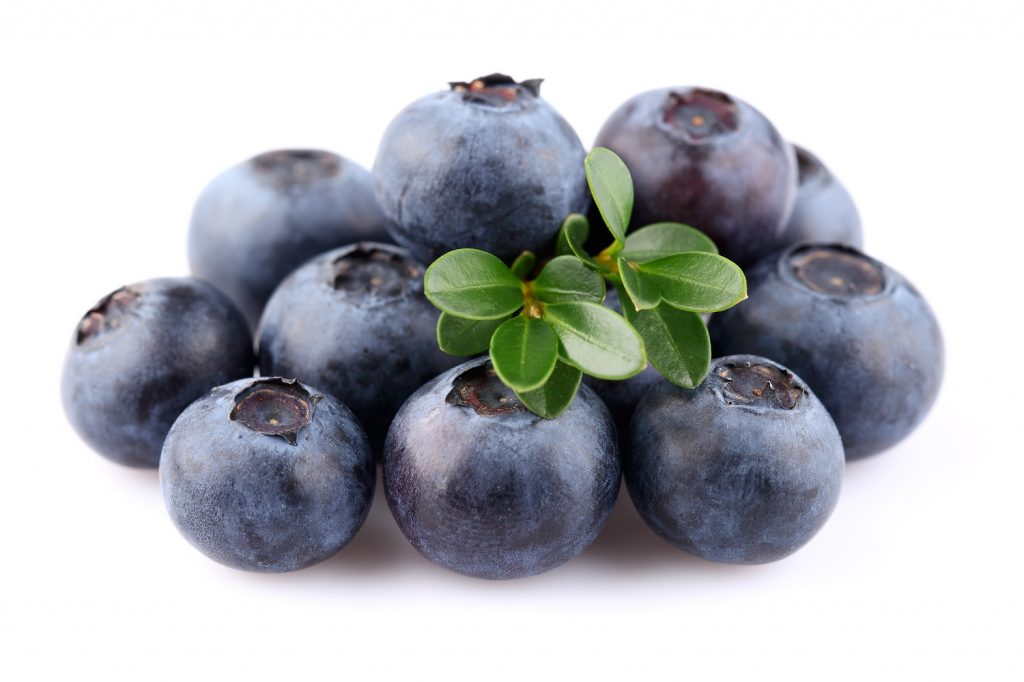 South Africa's blueberry production soars in 2019-20