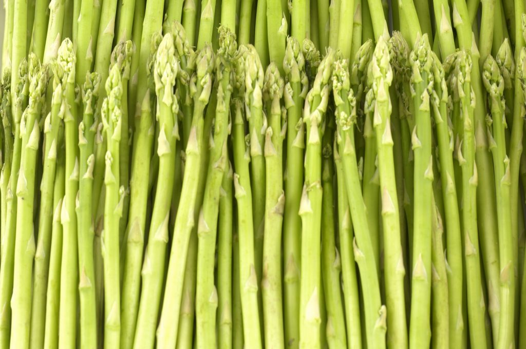 Agronometrics in Charts: Asparagus prices rising in U.S. market