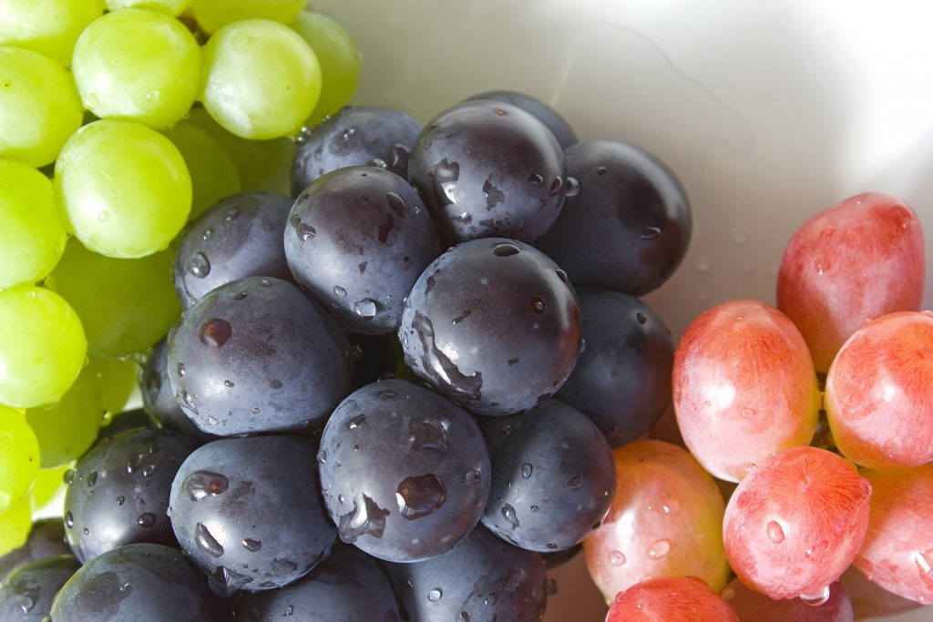 Grape compound can reduce risk of Alzheimer's disease - study