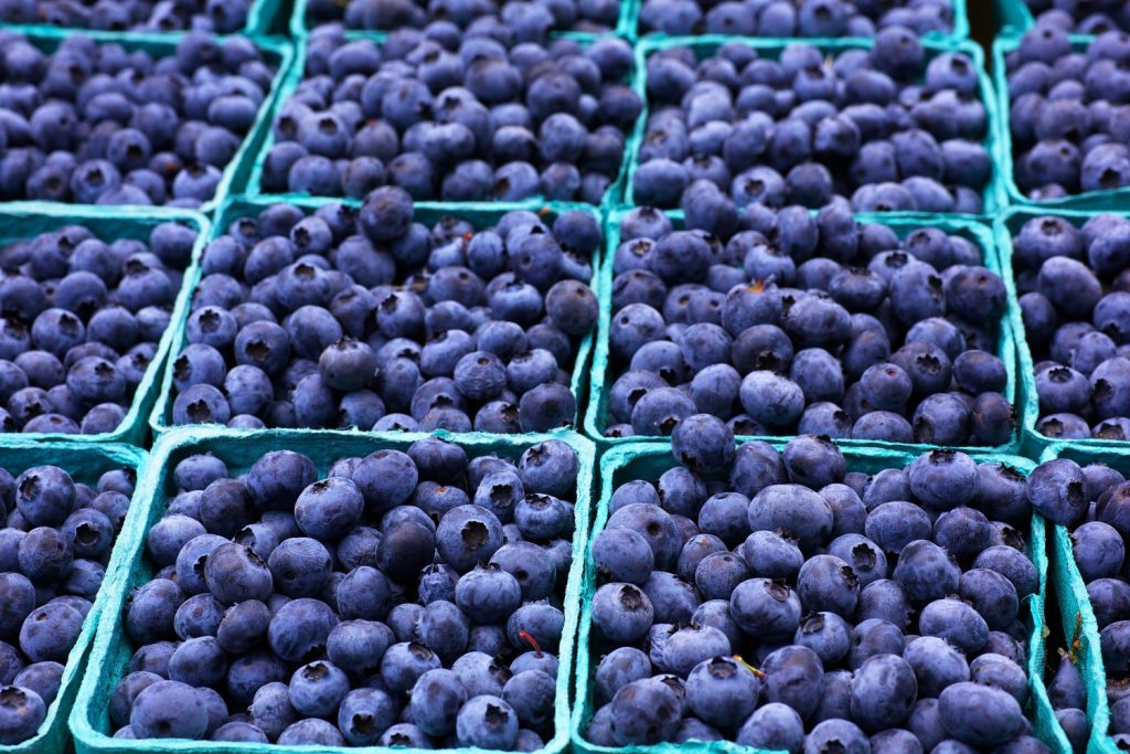 Peru forecasts massive lift in blueberry exports this year