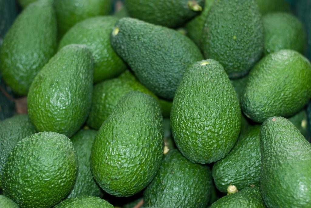 International avocado market expected to recover in Covid-19 aftermath