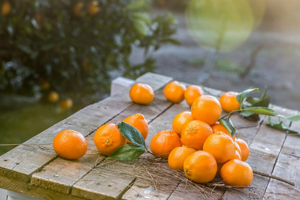 Summer Citrus from South Africa - a production and marketing update