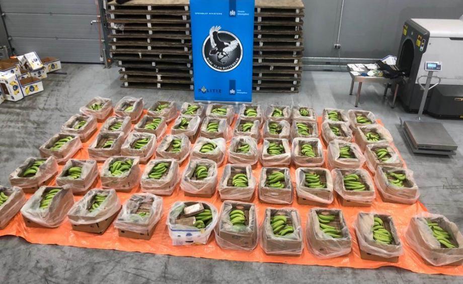 Dutch police find cocaine worth €56M in Ecuadorian banana shipment
