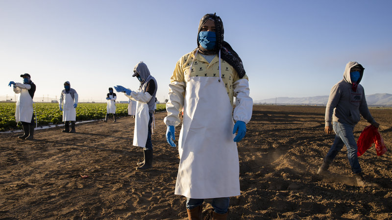Wildfires make dangerous air for farmworkers