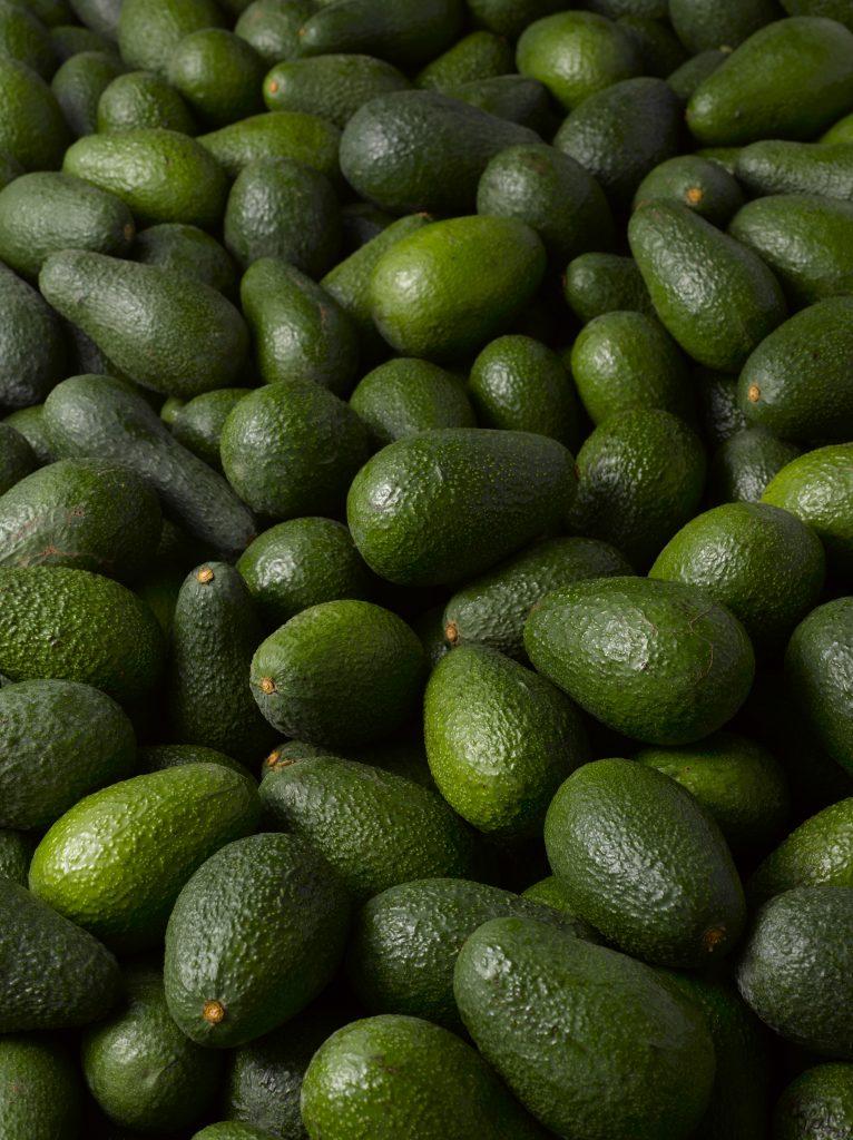 Kenyan avocado exports see price spike
