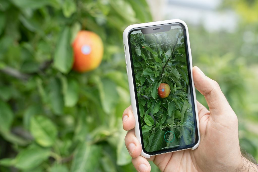 Pixofarm sets sights on southern hemisphere with apple crop monitoring and forecast solutions