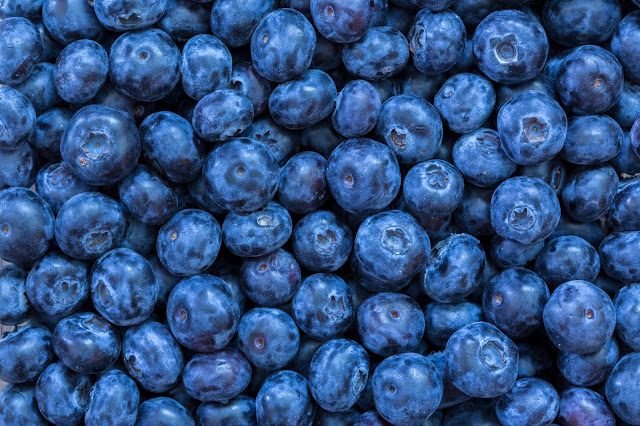 Peruvian blueberry exports increased during 2020-21 season